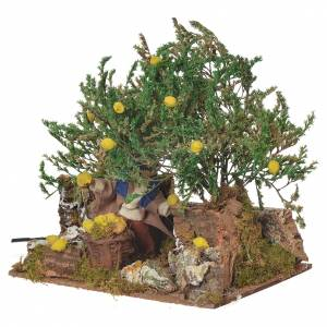 Man picking lemons, 12cm animated nativity s3
