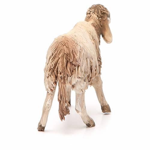 Mouton debout 18 cm crèche Angela Tripi s3