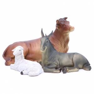Nativity set in resin, 10 figurines measuring 25cm s6