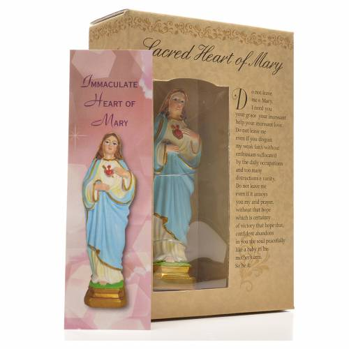 Sacred Heart of Mary 12cm with image and ENGLISH PRAYER s3