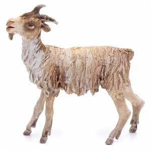Angela Tripi Nativity scene: Terracotta goat 13cm Angela Tripi