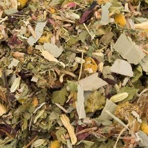 Teas and Brews: Camaldoli Eucalyptus herbal tea