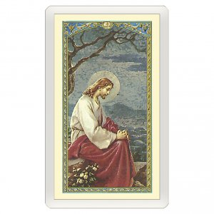 Holy cards: Holy card, Jesus praying in the Gethsemane, Act of Contrition ITA 10x5 cm