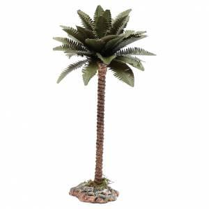 Muschio, licheni, piante, pavimentazioni: Palma 20 cm per presepe