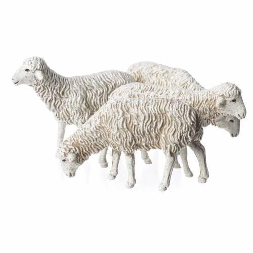 Pecore 4 sog. 12 cm Moranduzzo s2