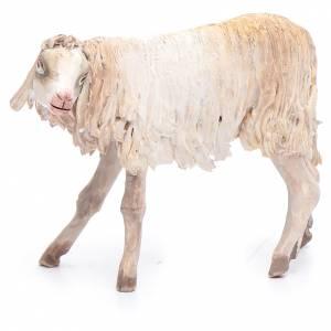 Krippenfiguren von Angela Tripi: Schaf stehend Terrakotta Angela Tripi 18 cm