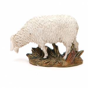 Sheep looking down in painted resin, 10cm Martino Landi Nativity s2
