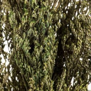 Trio de árboles para el pesebre de 16x3x32 cm s3