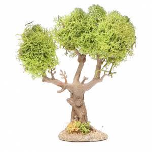 Muschio, licheni, piante, pavimentazioni: Albero in pvc e lichene per presepe