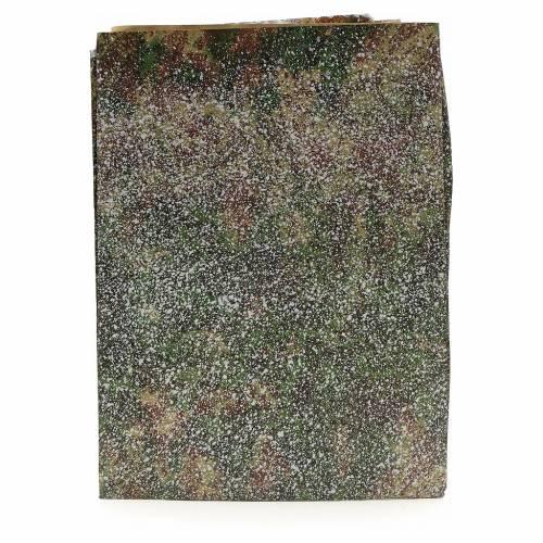 Carta roccia con neve 70x100 cm s1