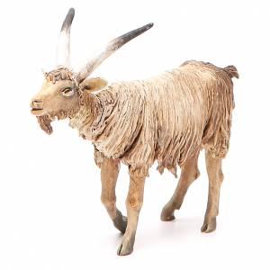 Male goat 18cm Angela Tripi s1